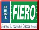 Fiero_logo